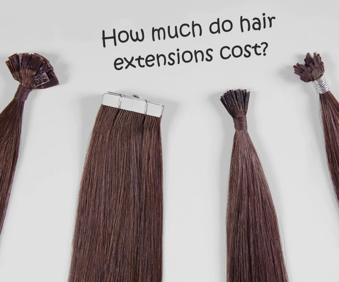 01 How Much Do Hair Extensions Cost